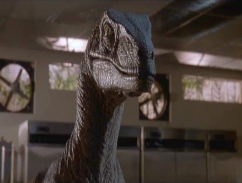 Illustration for article titled Velociraptor From 'Jurassic Park' Dies