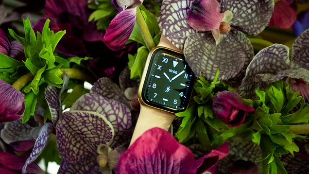 How the Apple Watch Became My Favorite Quarantine Gadget