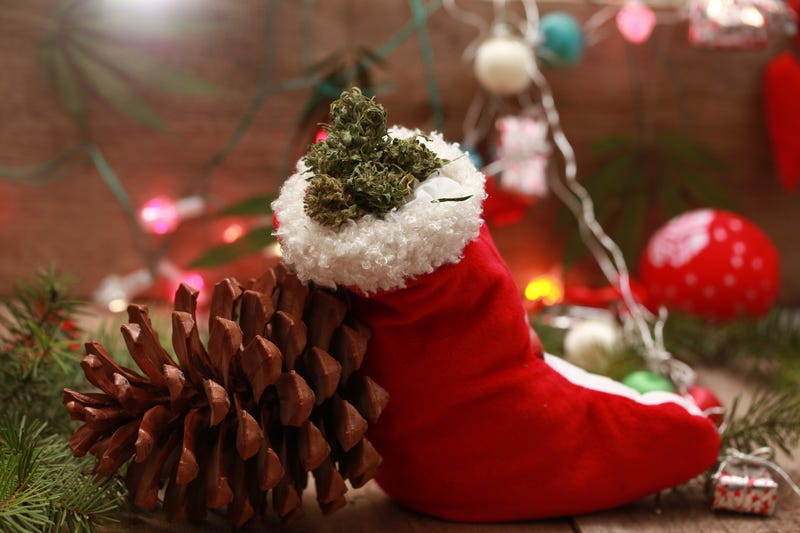Christmas Weed.Dreaming Of A High Christmas Couple In Their 80s Busted