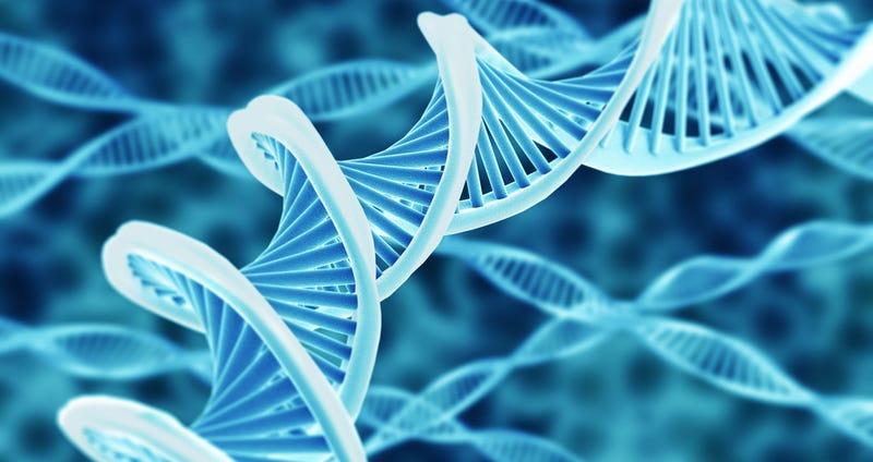 Esta app y un superordenador usarán tu ADN para darte consejos de salud