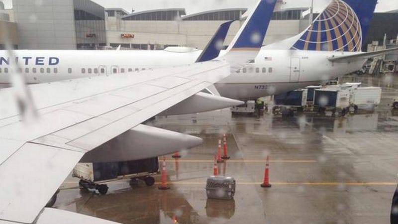 Illustration for article titled United Airlines Allegedly Leaves Caged Dog Unattended In The Cold Rain