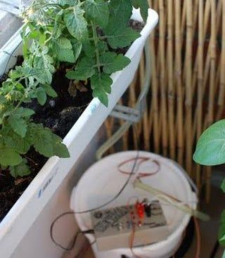 Build an arduino powered tweeting self watering garden for Sistema irrigazione fai da te