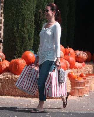 Illustration for article titled Kristin Davis Purposely Passes Pumpkin Patch