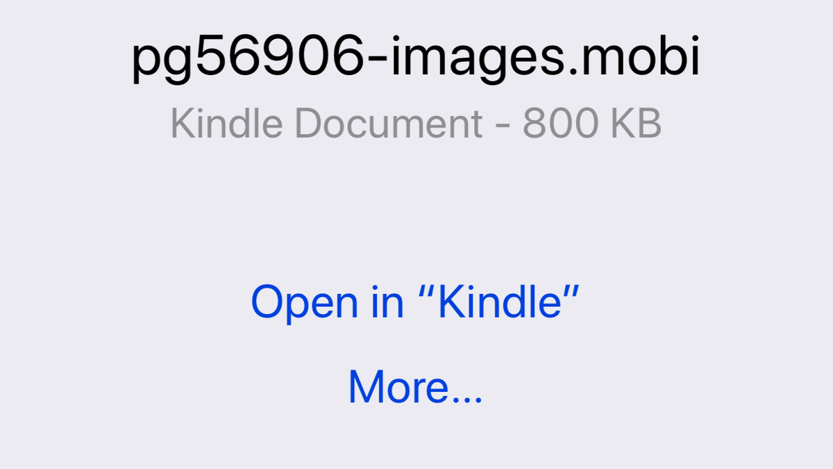 Get the Most Out of Your Kindle iOS App