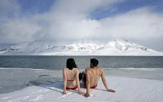 Illustration for article titled Arctic Summers Could Be Ice-Free And Filled With Life By 2030