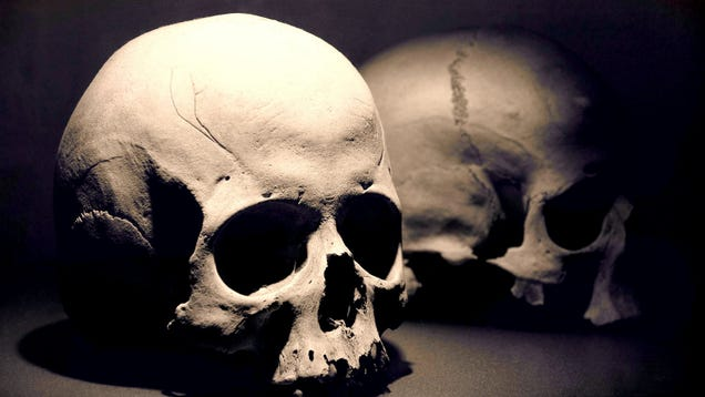 The Black Death May Have Had a Surprising Effect on the Environment