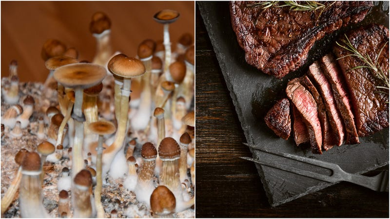 Scientists will grow giant slabs of meat from mushrooms