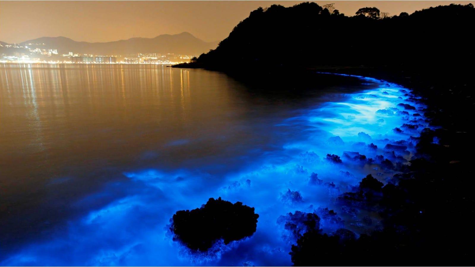 11 playas tan extrañas que parecen sacadas de otro planeta