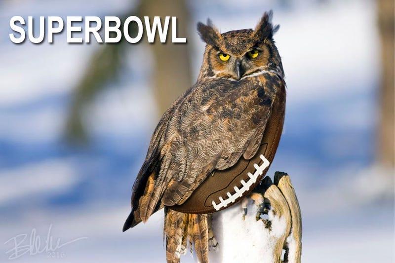 Illustration for article titled SuperbOwl
