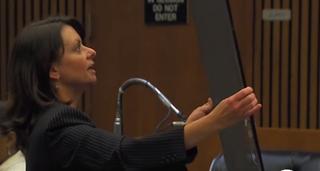Cheryl Carpenter, Theodore Wafer's defense attorney, presents a damaged screen door in her opening statements.WXYZ-TV Detroit Screenshot