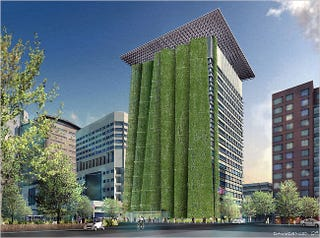 Illustration for article titled Portland Government Plans 200-ft. Tall Energy-Saving Plant Wall
