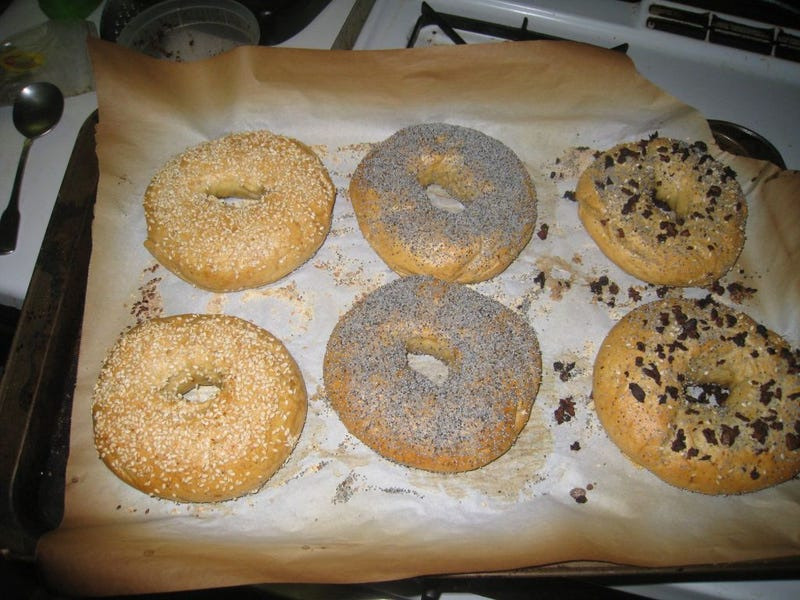 Illustration for article titled Project Breadway: Yes, You Can Make Bagels At Home