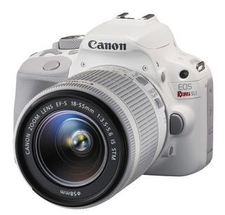 Illustration for article titled White Canon Rebel?