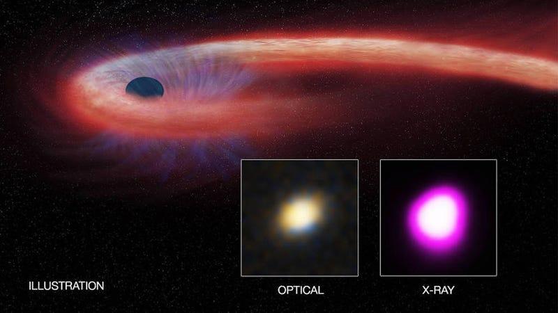 Illustration: CXC/M. Weiss; X-ray: NASA/CXC/UNH/D. Lin et al, Optical: CFHT. (Image: NASA)