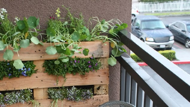 Turn A Wood Pallet Into A Vertical Garden To Liven Up A