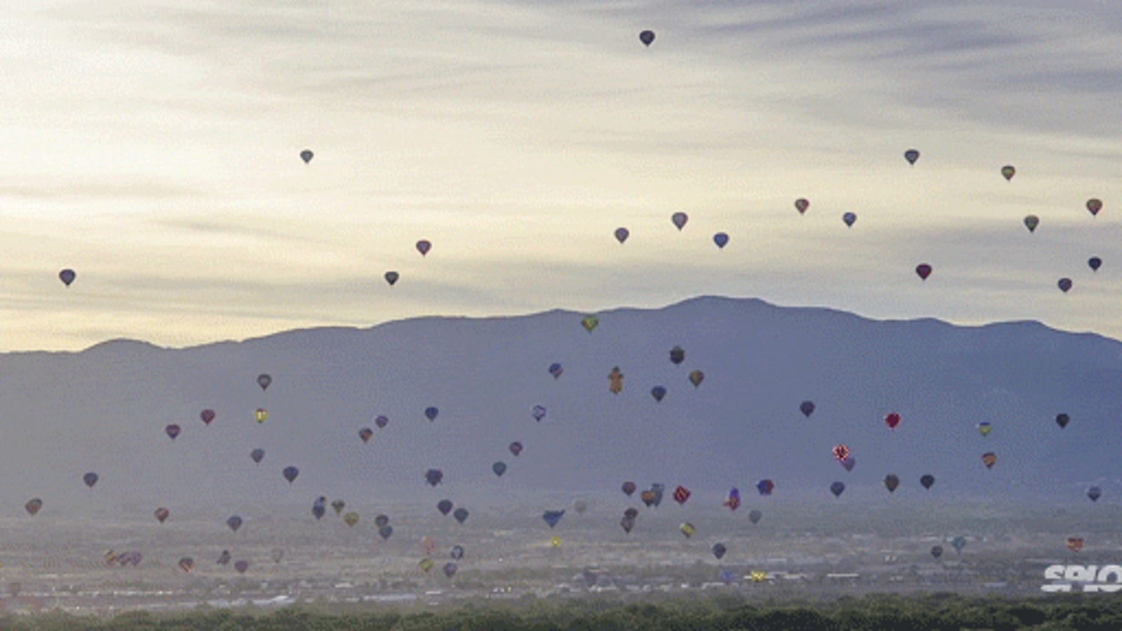 worlds largest hot air balloon festival