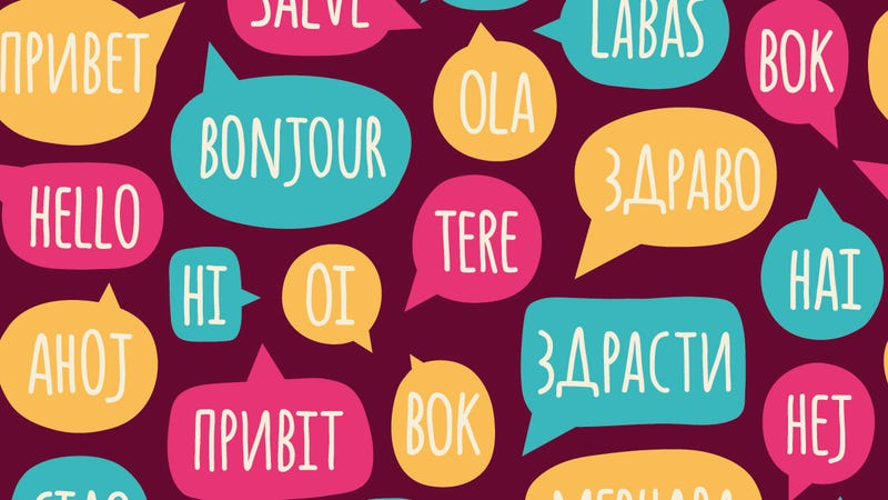 Language Immersion School