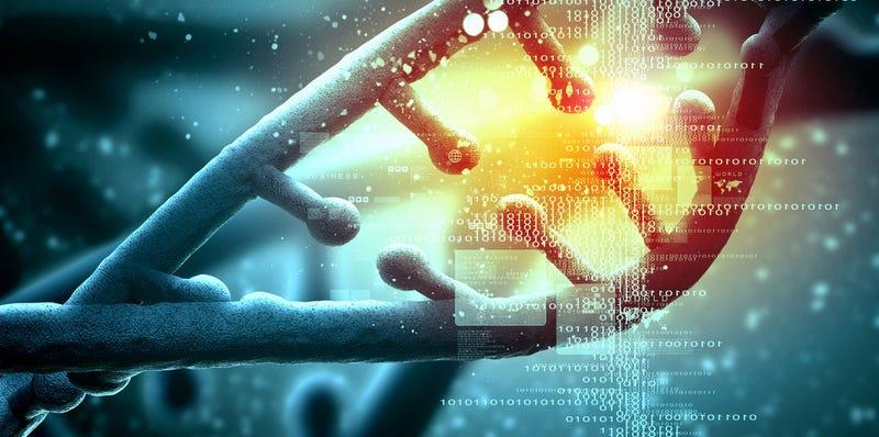 Illustration for article titled Una nueva técnica localiza el origen de tu ADN hasta mil años atrás