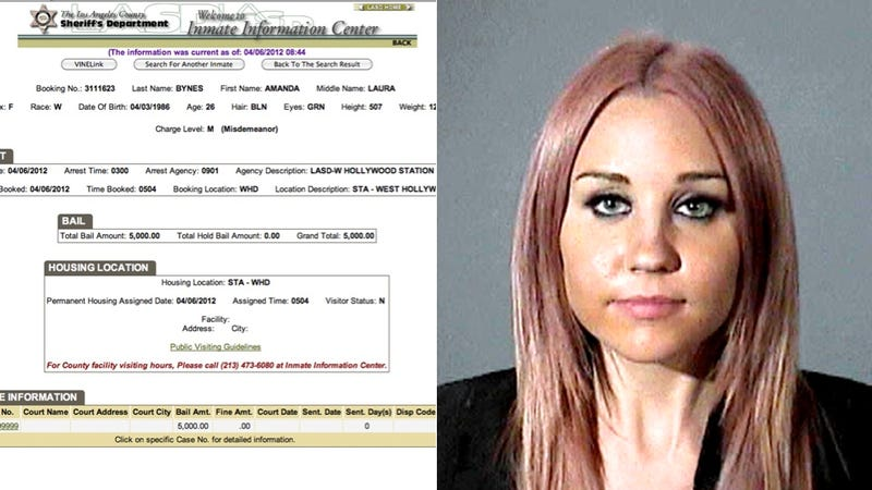 Illustration for article titled Amanda Bynes Stupidly Decides to Drive Drunk and Run Into a Cop Car