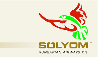Illustration for article titled Tintahaltestű kolibri lett a Sólyom Airways logója