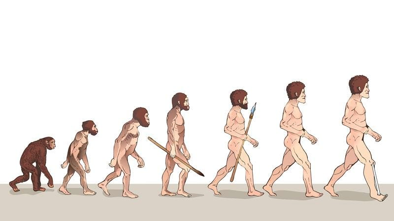 Illustration for article titled The Evolution Of Man: 7 New Physical Traits That Humans Will Develop Over The Next Million Years