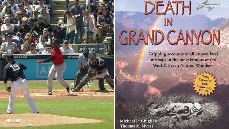 Illustration for article titled Yankees Broadcasters Share Heartwarming Anecdote About People Who Died At The Grand Canyon