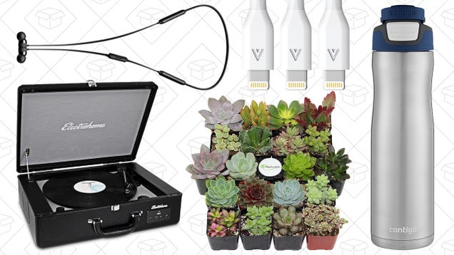Saturdays best deals succulents turntables contigo water bottles saturdays best deals succulents turntables contigo water bottles and more fandeluxe Gallery