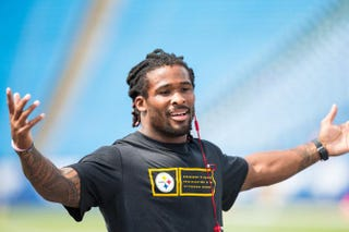 DeAngelo Williams of the Pittsburgh SteelersBrett Carlsen/Getty Images