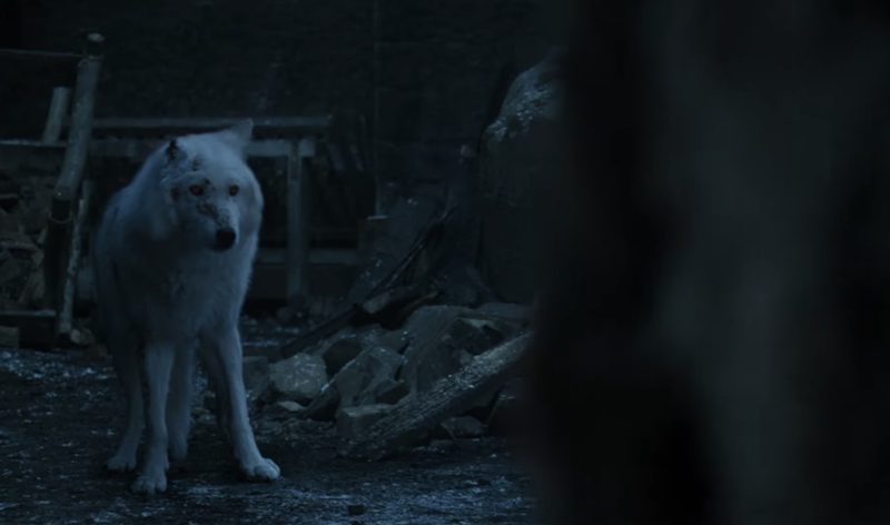 Illustration for article titled Game Of Thrones director blames CGI for Jon's lackluster goodbye to Ghost