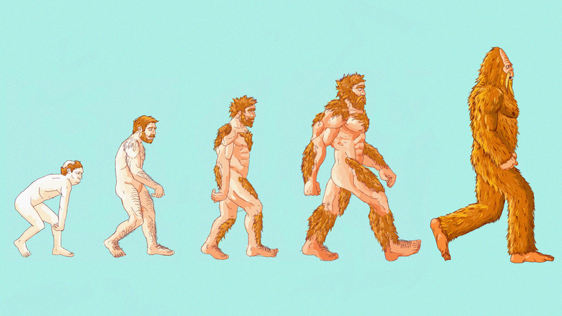Illustration for article titled Here's What The 4-Week Sasquatch Challenge Does To Your Body