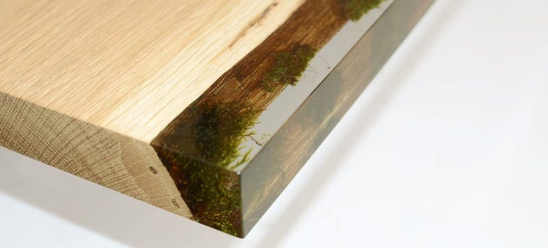 Illustration for article titled The Natural Moss on This Wooden Bookcase Is Preserved Forever in Resin