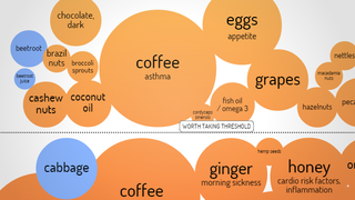 """Illustration for article titled This Chart Shows the """"Superfoods"""" Backed with Some Scientific Evidence"""