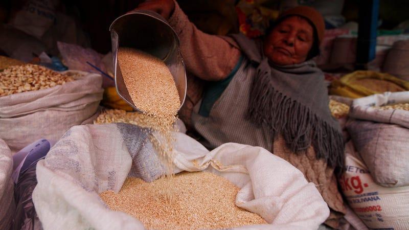 Una mujer vende semillas de quinoa en un mercado de La Paz, Bolivia. Imagen: Juan Karita / AP