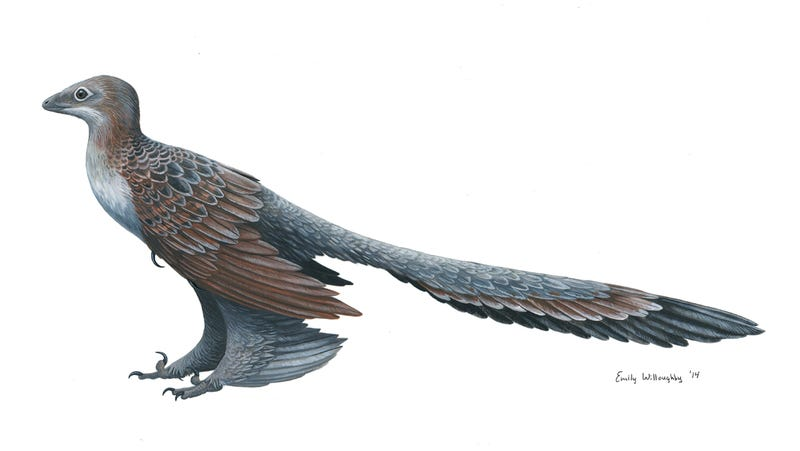 Illustration for article titled The Dinosaur Waited Patiently on Its Wing Legs, Ready for Flight