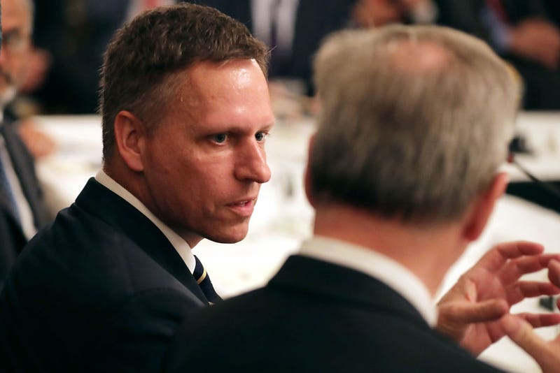 Peter Thiel during a meeting of the White House American Technology Council on June 19, 2017 (Photo by Chip Somodevilla/Getty Images)