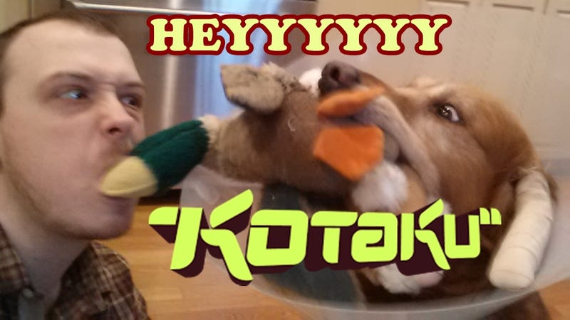 Illustration for article titled Hey Kotaku, I'm Your Weekend Editor