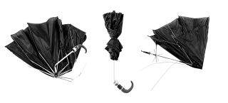 Illustration for article titled Mangled Umbrella Photos Put a Staple of NYC Life In the Spotlight