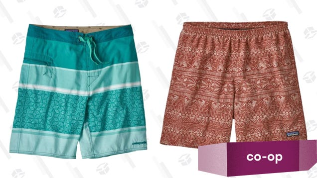 79192cb2b9 Six solid finalists made the cut in this week's swim trunk Co-Op, but in  the end, they all had to clear out of the pool for Patagonia, which took  both of ...