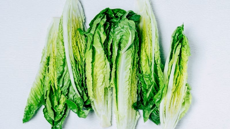 Illustration for article titled Good news, salad fans: Romaine is back