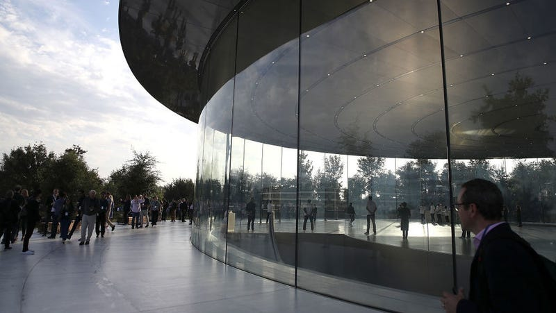 Apples Excellence In Design Leads To Employees Smacking Into Glass