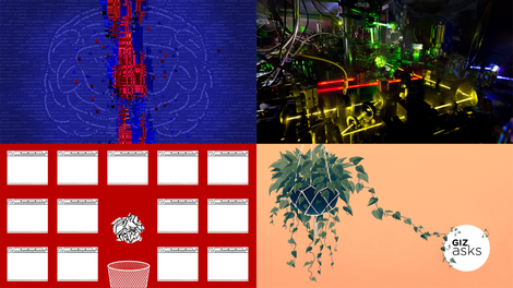 The World's Smartest Plants, Atomic Clocks, and Whale Poop