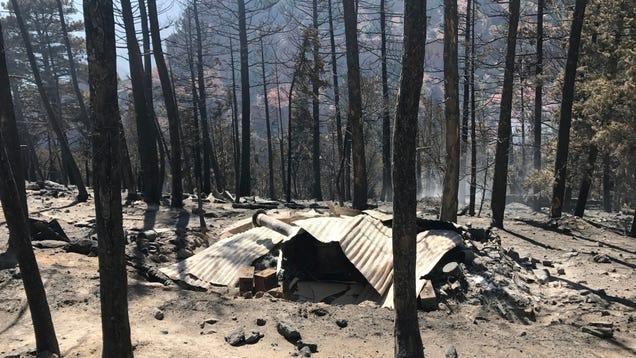 Doomsday Prepper s Sketchy, Ammo-Filled Bunker Destroyed by Regular Old Wildfire