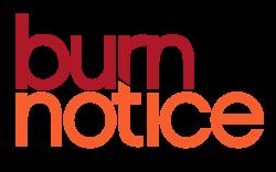 Illustration for article titled Burn Notice Finale