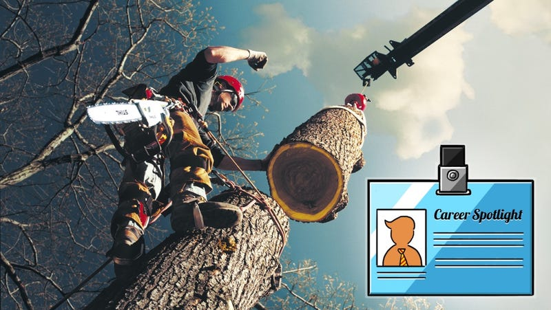 Illustration for article titled Career Spotlight: What I Do as an Arborist