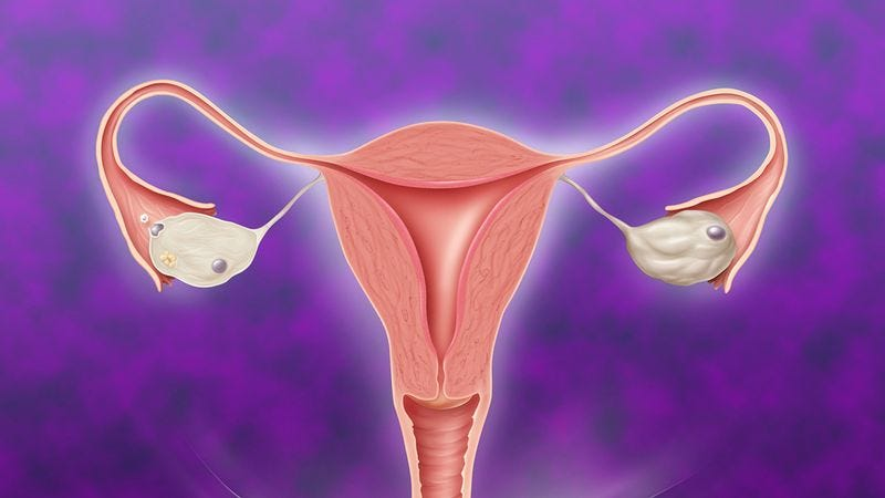 Illustration for article titled Can Your Exhaustive Knowledge Of Fallopian Tubes Convincingly Cover Your Ignorance Of The Rest Of The Human Body?