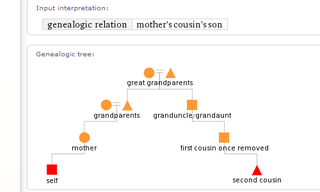 Illustration for article titled Use Wolfram Alpha to Figure Out Confusing Family Relationships