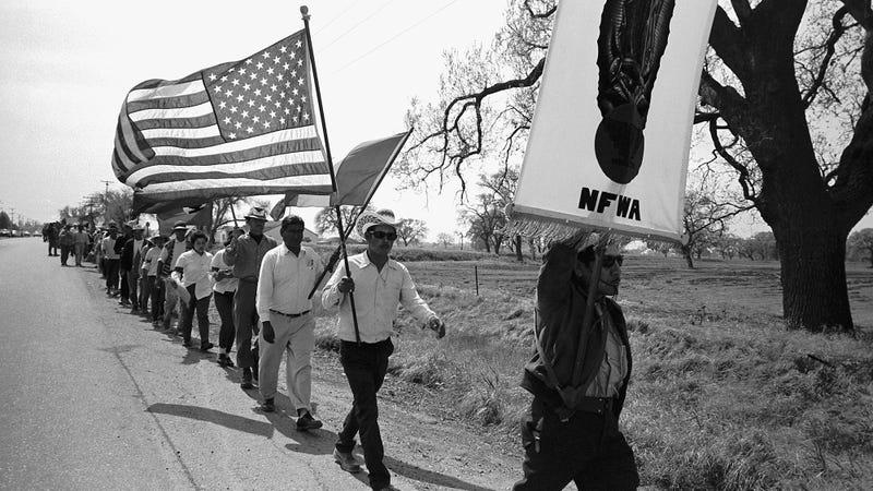 Famous Boycotts In U.S. History