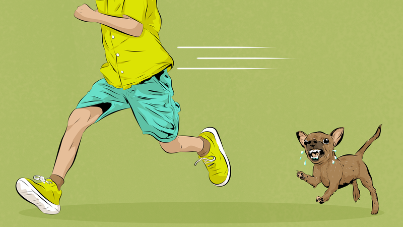Illustration for article titled Can I Be Sued If My Dog Bites A Trespassing Kid In My Own Backyard?