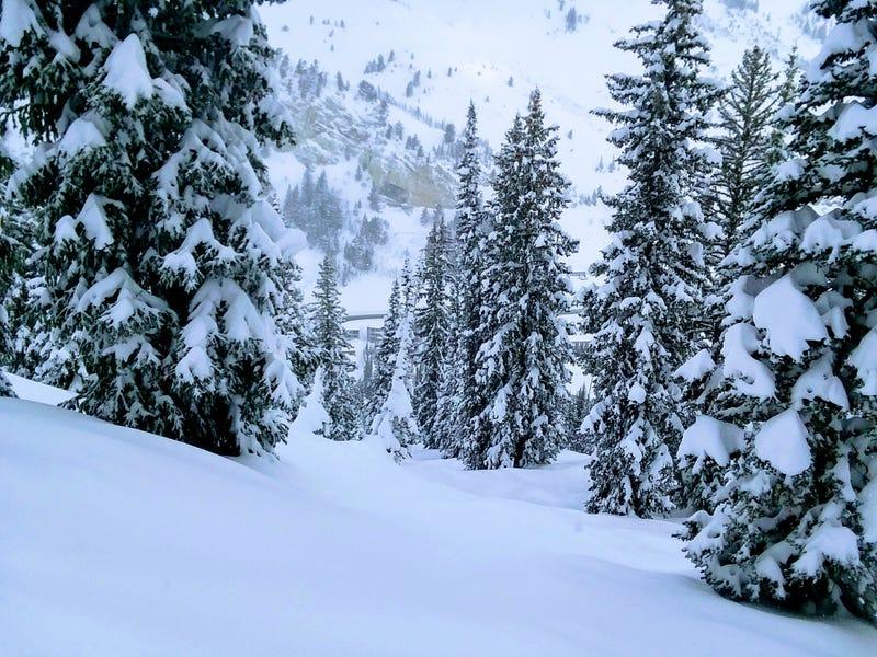 Illustration for article titled '18/'19 Ski Blog (Post #7) -Solitude and Alta, UT