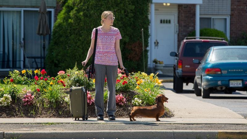 Greta Gerwig in Wiener-Dog (Photo: IFC)